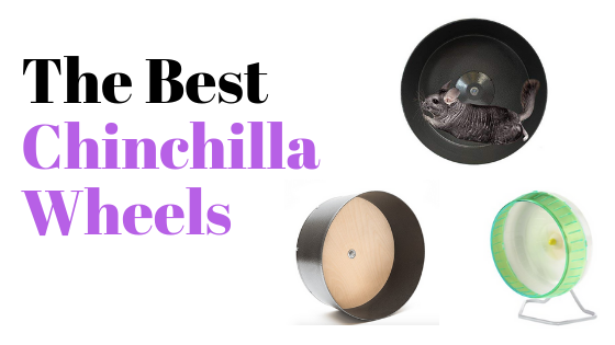 Best chinchilla wheels