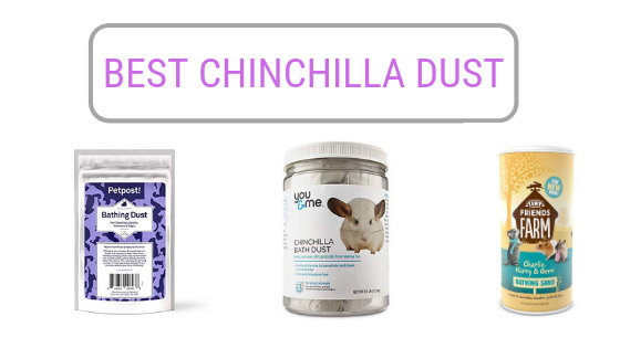 best-chinchilla-dust