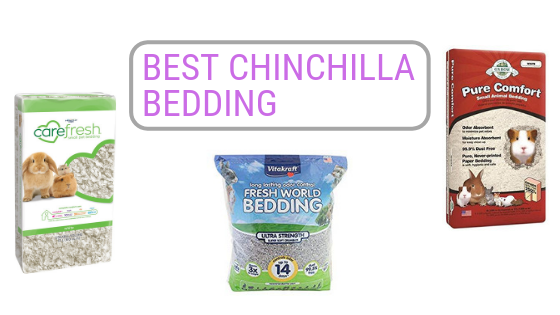 Best Chinchilla Bedding