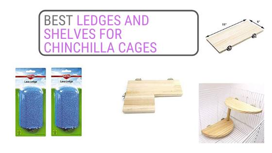 best chinchilla ledges and shelves