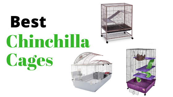 Best-Chinchilla-Cages